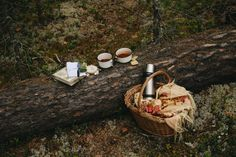 Picnic on a log Comida Picnic, Vie Simple, Autumn Aesthetic, Picnic Time, Fall Picnic, Slow Living, Autumn Inspiration, The Great Outdoors, A Table