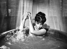 Photo Gina Lollobrigida 11x15 CM 2 | eBay