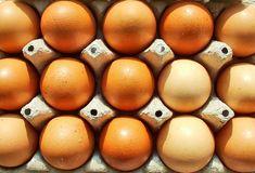 Paljon kananmunassa on proteiinia?