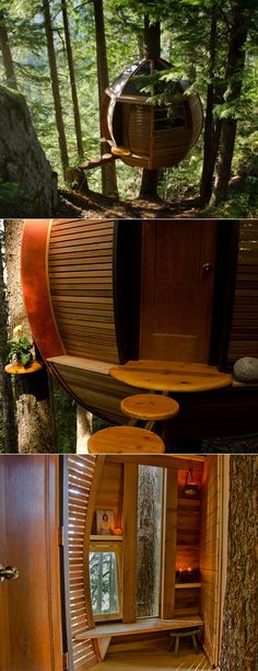 HemLoft treehouse built by a software engineer and his girlfriend illegally in a reserved forest.