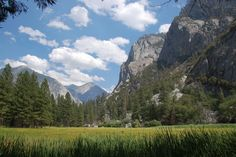 Best Hikes in Sequoia and Kings Canyon National Parks for Kids