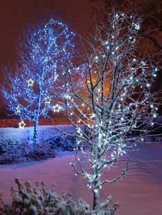 Christmas tree lights in the snow | www.lights4fun.co.uk