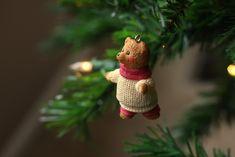 bear-2656876_1920