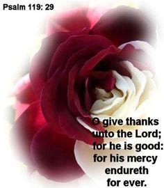 Psalm 119:29