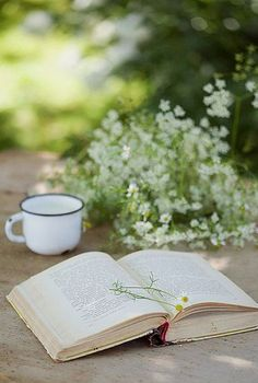 I love having my cuppa' outdoors with a book. Ah, the love & joy of reading ✿⊱╮