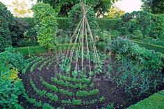 Who says gardens have to be in straight lines?