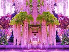 Kawachi Fuji Gardens Japan - must go here