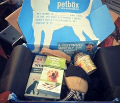 Keep Your Dog Entertained with #PetBox