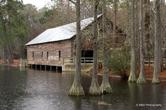 Parrish Mill and Covered Bridge (or Watson Mill) - George L. Smith State Park, Twin City, GA
