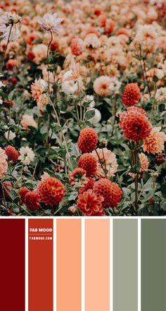 Nourish Seven A Creative Oasis Fields of Fancy Florals Color Palette Color Scheme Autumn Vibes Color Palette Inspiration Color Schemes Colour Palettes, Red Colour Palette, Orange Color Palettes, Fall Color Schemes, Decorating Color Schemes, Vintage Colour Palette, Peach Palette, Colour Combinations, Wedding Colour Schemes