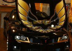 Pontiac 2014 - 2015 Firebird Trans Am