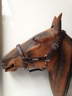 FAST P&P Beautiful Padded Leather Headcollar silver fitting Blk&Brn SZ- P-C-F-XF