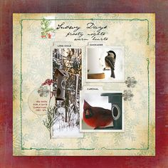 December at the Bird Feeder - Digital Scrapbooking Ideas - DesignerDigitals