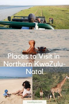 Whether you're houseboating on Lake Jozini, estuary cruising in St. Lucia or game viewing in Hluhluwe-Imfolozi, Northern Kwa-Zulu Natal has a wealth of natural outdoor wonders to enjoy. Kwazulu Natal, Wealth, Travel Inspiration, Cruise, Places To Visit, Africa, Articles, Game, Natural
