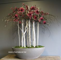 images about Floral Art on Ikebana Arrangements, Creative Flower Arrangements, Modern Floral Arrangements, Ikebana Flower Arrangement, Art Floral, Design Floral, Deco Floral, Unusual Flowers, Beautiful Flowers