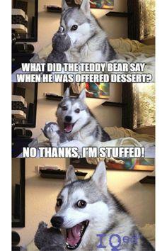 Fun Meme Friday