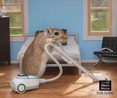 Vacuuming my room! #gerbil #gerbils #miniatures #miniature #rodent #rat #hamster #rement #dollhouseminiatures #dollshouse #dollhouse #mini #petsofinstagram #petsofig #pets_of_our_world
