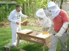 Top Bar bee hives allow for easy maintenance and higher quality honey Honey Bee Home, Honey Bees, Garden Projects, Garden Ideas, Top Bar Bee Hive, Bee Hives, Homestead Survival, Garden Gate, Beekeeping