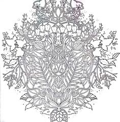 Flower Coloring Pages Adult Tips Books Colouring Techniques Johanna Basford Growing Up Pencil Drawings