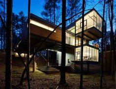 modernist forest home