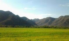 Badillo Valledupar Colombia