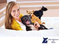 ¿Mi mascota puede tener caries? LA MEJOR CLÍNICA VETERINARIA DE MÉXICO. Las caries no son muy frecuentes en perros. Los animales domésticos como los humanos, pueden tener caries, sin embargo, son relativamente raras en los animales porque generalmente, no tienen dietas ricas en azúcares, eso no quiere decir que no requieran tratamientos preventivos. En Clínica Veterinaria del Bosque, te damos tips para que tu mascota lleve una vida saludable. www.veterinariadelbosque.com…