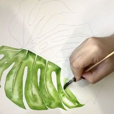 Monstera in sap green . Green Watercolor, Watercolour Painting, Watercolor Flowers, Painting & Drawing, Watercolors, Leaf Drawing, Painting Walls, Diy Painting, Watercolour Tutorials