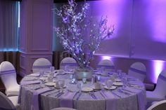 Sweet Sixteen Decoration Ideas Beautiful Silver & Lavender Led Tree Sweet 16 – Hip and Zen Quince Centerpieces, Sweet 16 Centerpieces, Quince Decorations, Quinceanera Centerpieces, Quinceanera Themes, Butterfly Centerpieces, Hall Decorations, Wedding Centerpieces, Sweet Sixteen Decorations