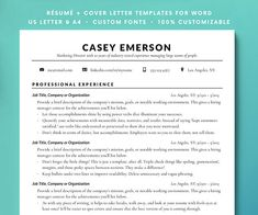 Professional Resume Samples Free Professional Cv Template