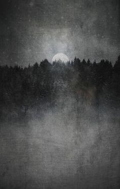 wolf folklore asatru scandinavian folklore huldra lady of the forest skogsrå Saga, Becoming Human, Norse Vikings, Asatru, Norse Mythology, Wild Nature, Stunningly Beautiful, Dark Souls, Folklore