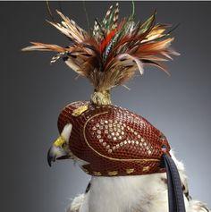 Falcon with  Falcon Hood