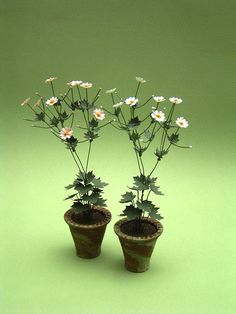Japanese Anenome Paper Flower Kit for by TheMiniatureGarden