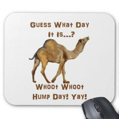 $$$ This is great for          Its Hump Day Mouse Pad           Its Hump Day Mouse Pad We have the best promotion for you and if you are interested in the related item or need more information reviews from the x customer who are own of them before please follow the link to see fully reviewsSho...Cleck Hot Deals >>> http://www.zazzle.com/its_hump_day_mouse_pad-144542032487610714?rf=238627982471231924&zbar=1&tc=terrest