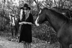Wild horses in Vieques, Puerto Rico | Stella Harasek. Photo from www.jarnojussila.com.