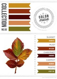 Color Muse: Collection No color scheme, color palette Gold green 50 color - Green Things Rust Color Schemes, Bedroom Color Schemes, Color Combos, Orange Color Palettes, Green Colour Palette, Pesto, Exterior House Colors, Paint Colors For Home, Room Colors