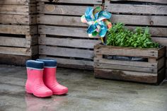 Uk Summer, Kids Boots, Beauty Full, Mothers Love, Back To School, Children, Cute, Pink, Cotton
