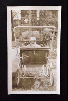 Original Antique Photograph Albert Likes His Carriage