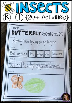 Insect Activities for Kindergarten. Are you looking for a factual unit to introduce insects in your kindergarten and first grade classroom? Our insect unit is just what you need! Alphabet Activities Kindergarten, Insect Activities, Kindergarten Units, Handwriting Activities, First Grade Activities, Kindergarten Lesson Plans, Preschool, Educational Activities, Spring Activities