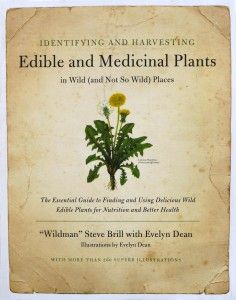 Identifying and Harvesting Edible and Medicinal Plants in Wild (and Not So Wild) Places   Homestead Survival
