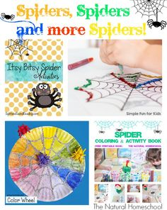 We have so many amazing bloggers out there that are writing some incredible posts. We love it when they come over every week to share what they're most proud of. Here are our awesome featured posts this week: Spiders, Spiders and More Spiders!