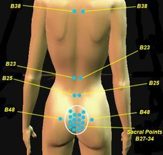 These are useful points for treating impotency, sexual reproductive problems, sacral pain, lumbago and lower back pain.