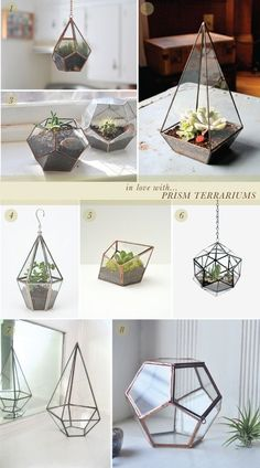 in love with… prism terrariums