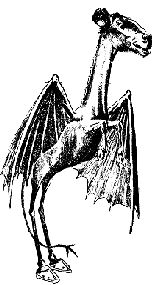 The Jersey Devil - The Jersey Devil is a legendary creature or cryptid said to inhabit the Pine Barrens of Southern New Jersey, United States. The most accepted origin of the story, as far as New Jerseyans are concerned, started with Mother Leeds who has been identified by some as Deborah Leeds.