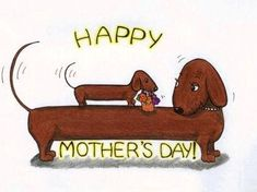 Happy Mother's Day from all of us at RDR! Dog Love, Puppy Love, Dashund, Dachshund Art, Weenie Dogs, Doggies, Delphine, Otter, Happy Mothers Day