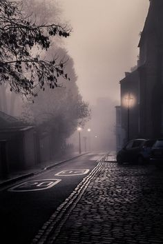 Misty winter morning black and white city lights winter street fog morning pinned with Pinvolve - pinvolve.co