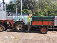 A common sight in our local area are men on tractors.In September, they are filled with grapes for the Bodega. The Bodega, Wine Making, Tractors, September, Drinks, How To Make, Men, Drinking, Beverages