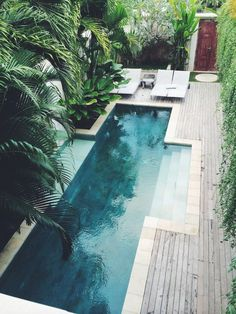 Swimming pool, palm trees, and white lounge chairs. Talk about backyard goals..