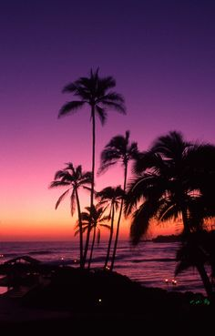 A view to the west of Tahiti at sunset #PalmTree