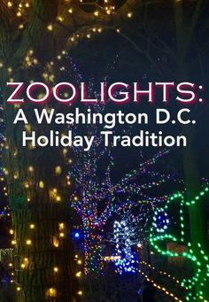 ZooLights: A Washington D.C. Holiday Tradition!