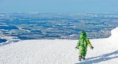 Schon gehört? Es ist kein Yeti, nein, auf dem Untersberg ist ein kleiner Drache unterwegs. Er spielt gerne im Schnee, baut sich eine Höhle oder klettert über Salzburg.  Haltet Ausschau nach ihm! Er ist zahm und einfach zum Knuddeln.  Kreiert eure eigenen Abenteuer mit Produkten von Catwalk Stories. Skateboard, Salzburg, Waves, Mountains, Nature, Outdoor, Little Dragon, Cool Jackets, Cuddle